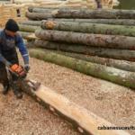 tehnologie cabane case din busteni cabane sucevita (2)